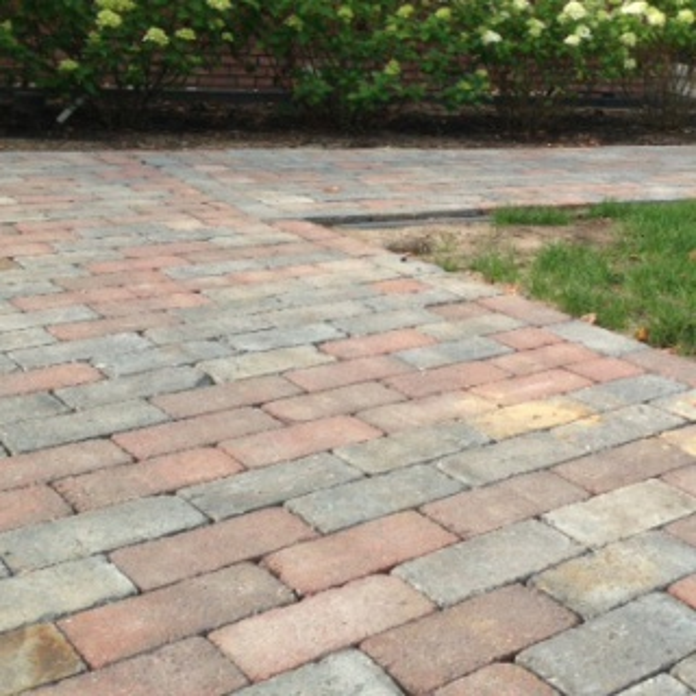 Pallet bonte betonklinkers zonder kleurkeuze (10 m2)