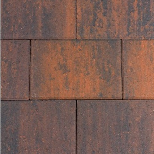 Straksteen Paars GV (STR07203005)