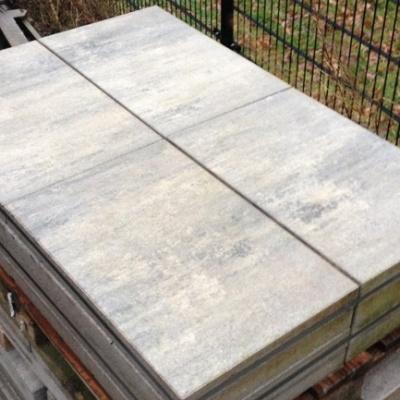 Trottoir Tuintegel Silver Grey Genuanceerd(GEB0202)